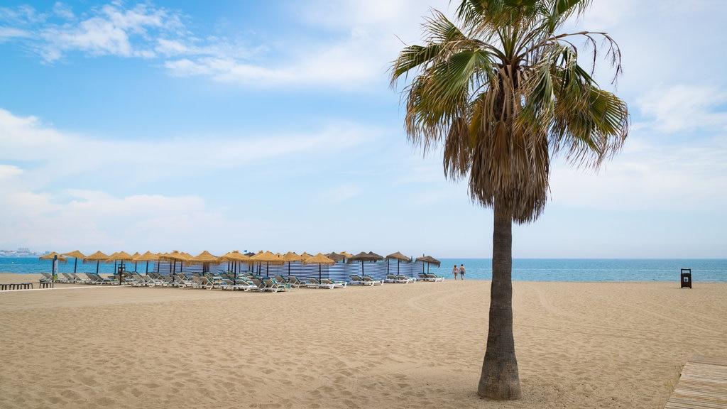 Playa Las Gaviotas ofreciendo una playa de arena y vistas generales de la costa