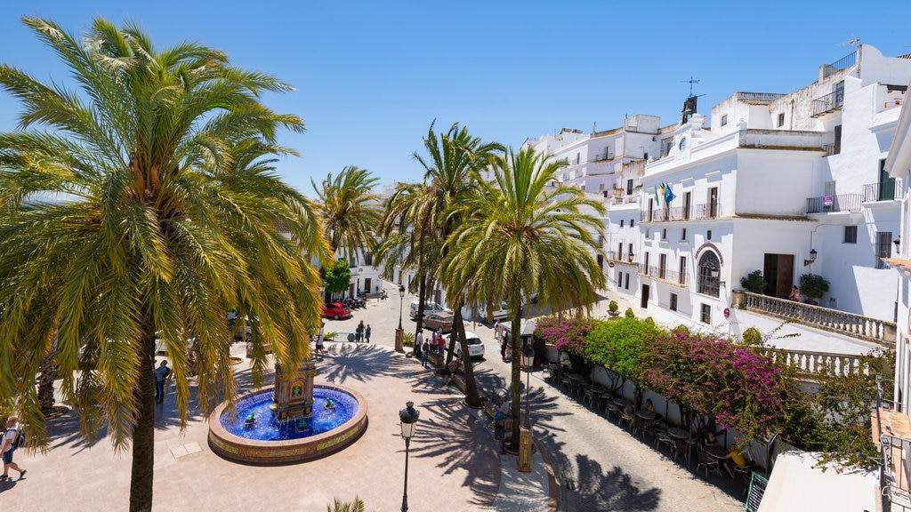 Plaza de Espana which includes a fountain