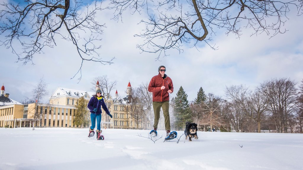 Traverse City featuring snow, hiking or walking and cuddly or friendly animals