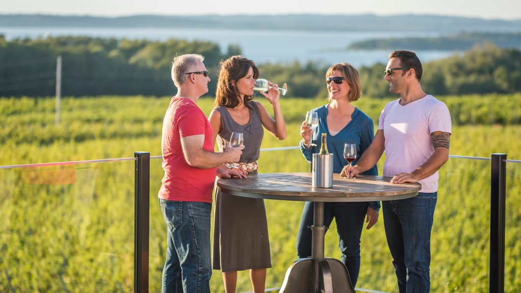 Traverse City which includes drinks or beverages as well as a small group of people