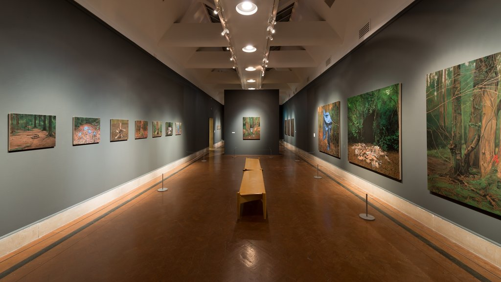 Southampton City Art Gallery which includes interior views and art