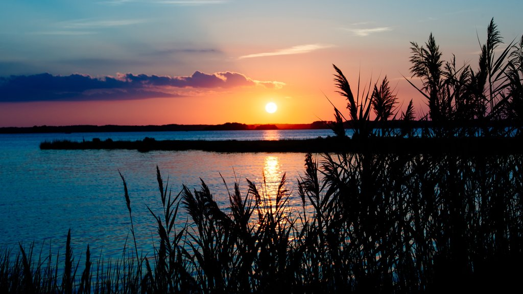 Ocean City featuring wetlands and a sunset