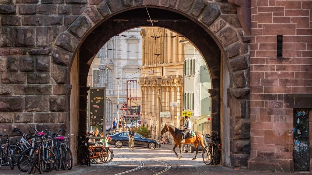 Martinstor Gate showing land animals, horseriding and a city