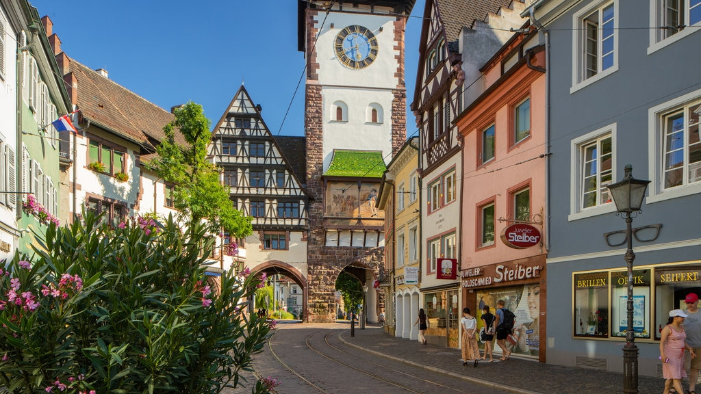 Schwabentor Gate which includes wildflowers and a city