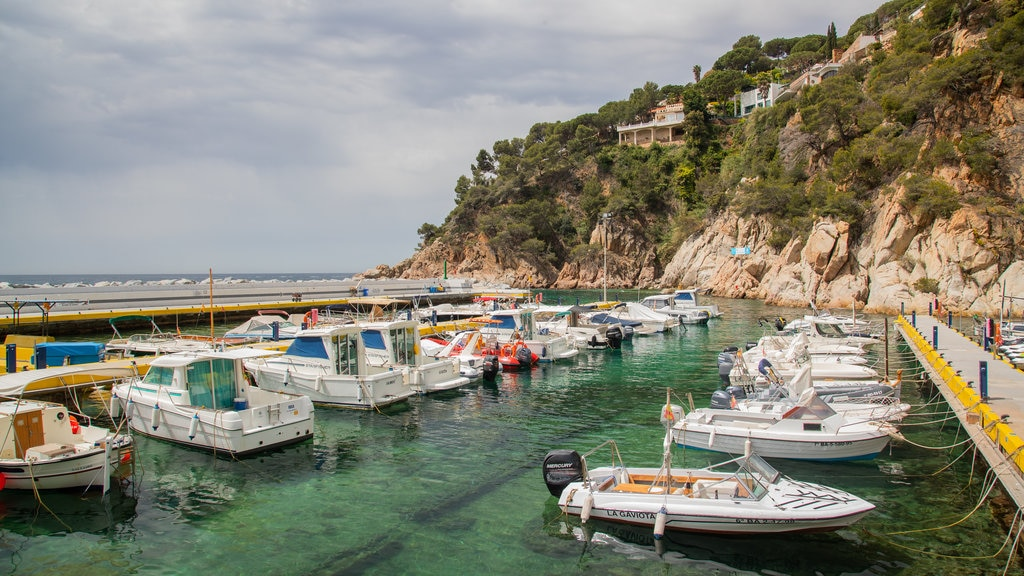 Cala Canyelles Beach featuring a bay or harbor and rocky coastline