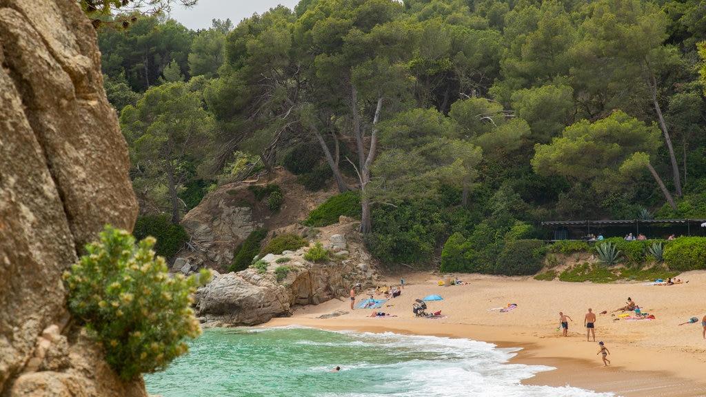 Santa Cristina Beach which includes a beach and general coastal views