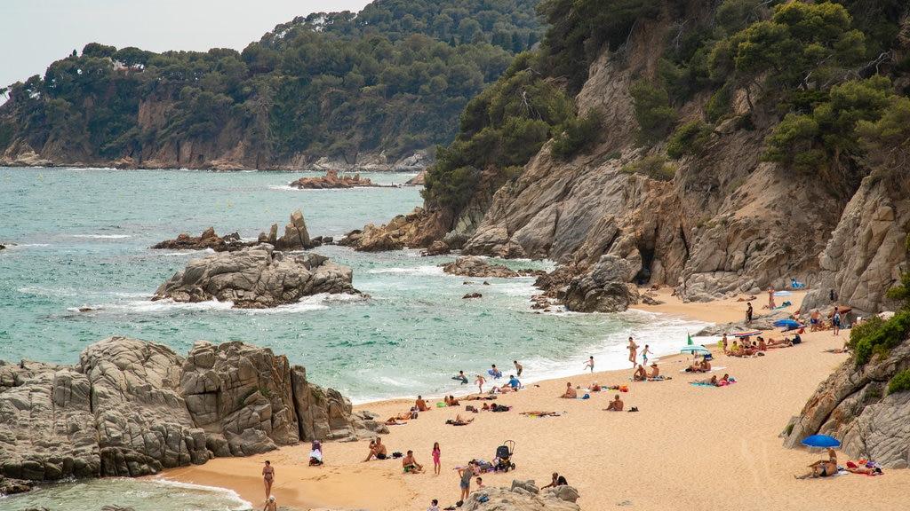 Cala Boadella Beach showing a beach, rocky coastline and general coastal views