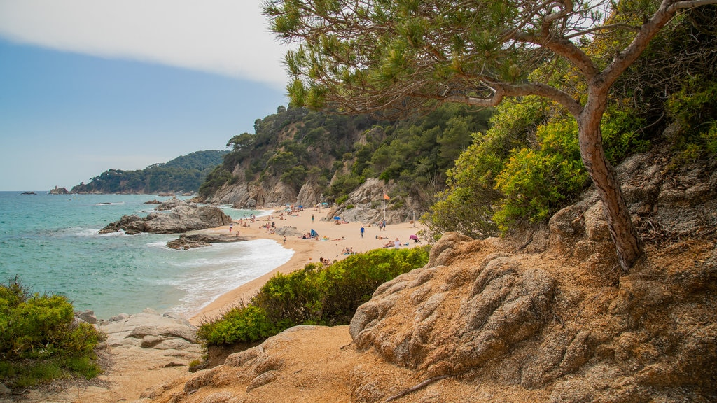 Cala Boadella Beach which includes general coastal views, a beach and rugged coastline