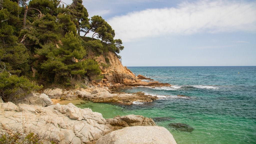 Cala Boadella Beach which includes general coastal views and rugged coastline