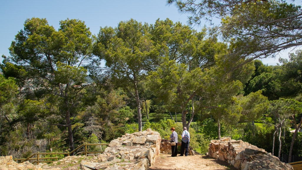 Turo Rodo Iberian Settlement which includes a park as well as a couple