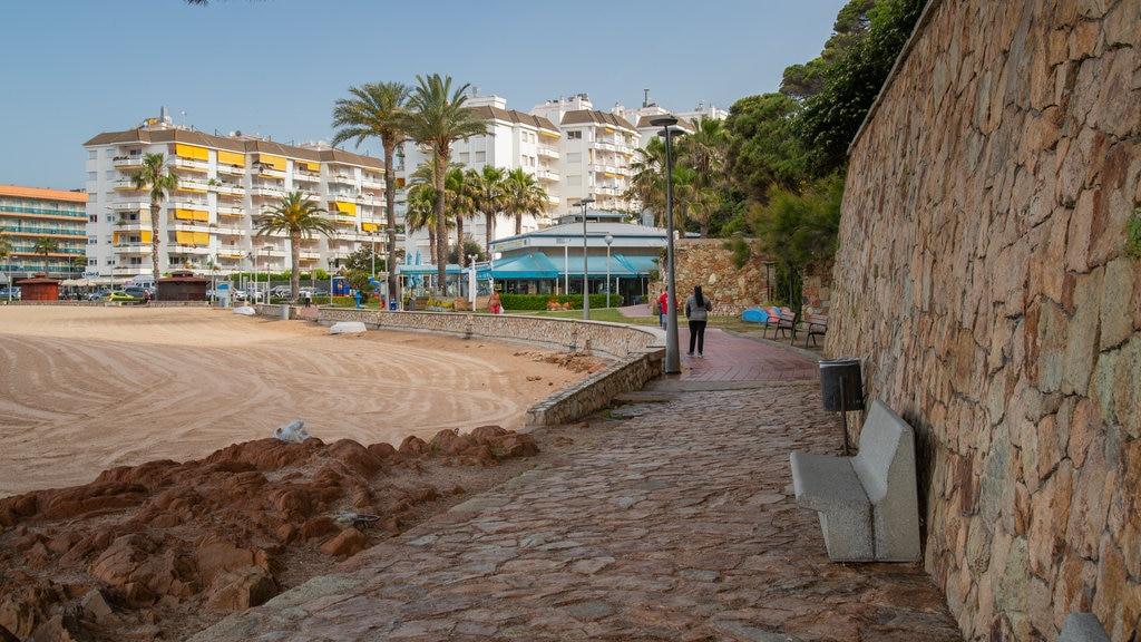 Fenals Beach showing a coastal town and a sandy beach