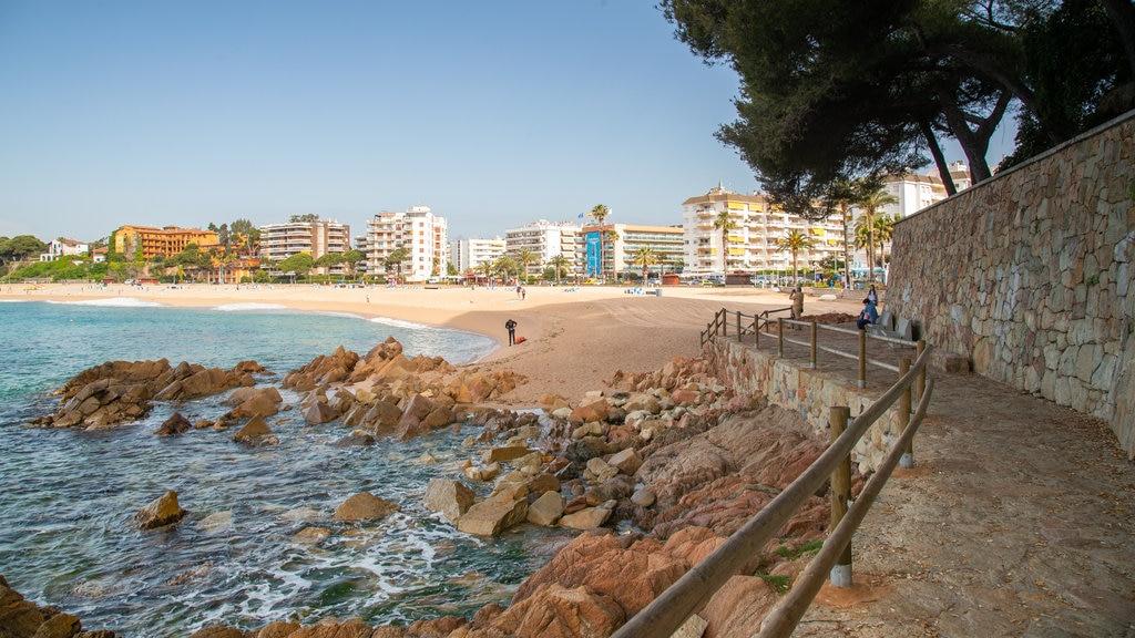 Fenals Beach featuring general coastal views, a coastal town and a sandy beach