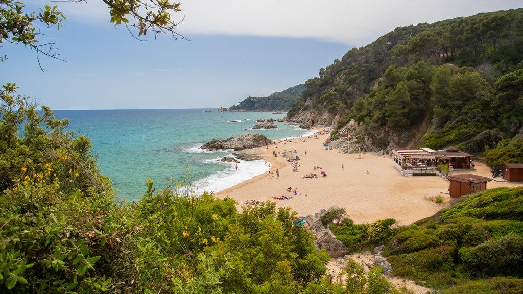 Cala Boadella Beach featuring a sandy beach, general coastal views and landscape views
