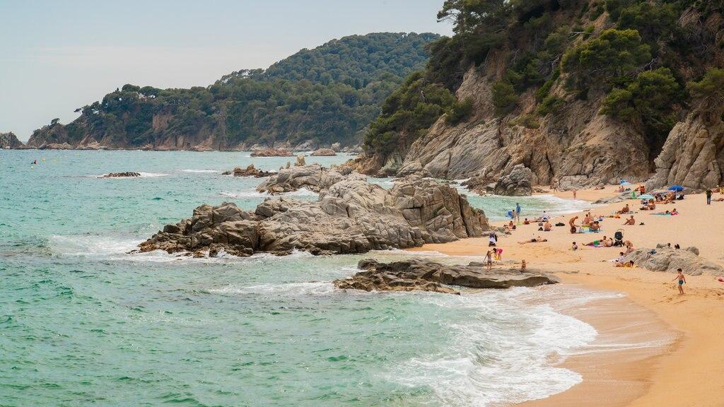 Cala Boadella Beach featuring general coastal views, a sandy beach and rocky coastline
