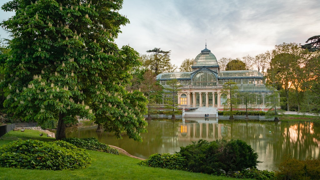 El Retiro Park showing a pond, a garden and a sunset