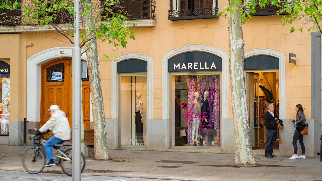 Salamanca featuring signage