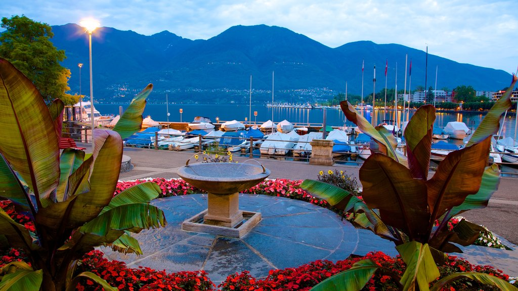 Locarno featuring a fountain, a bay or harbor and flowers
