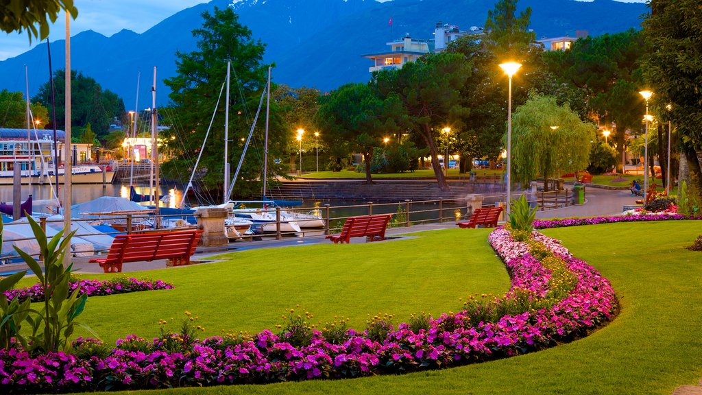 Locarno featuring a garden, a bay or harbor and night scenes