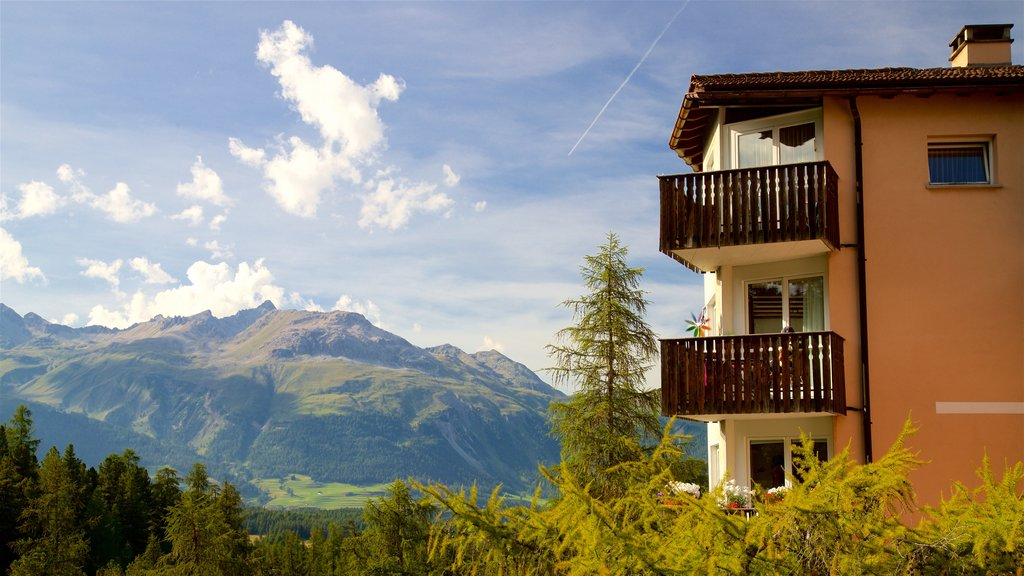 Pontresina which includes tranquil scenes, landscape views and a small town or village