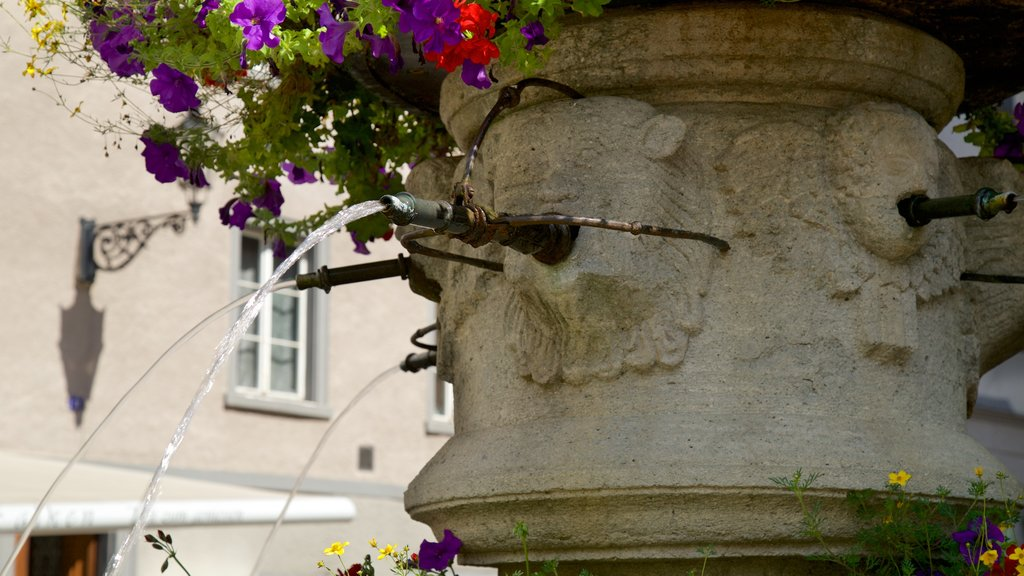 Chur showing a fountain and flowers