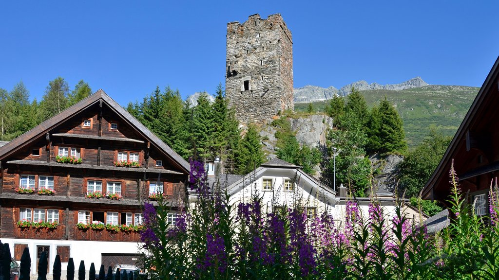 Andermatt showing wildflowers and heritage architecture