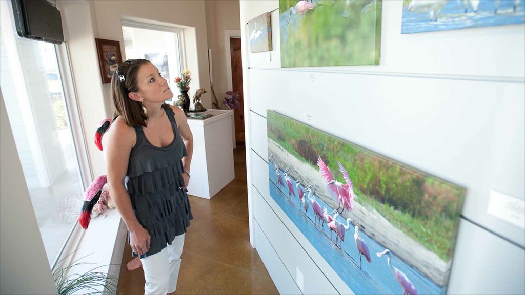 Port Aransas featuring art and interior views as well as an individual femail