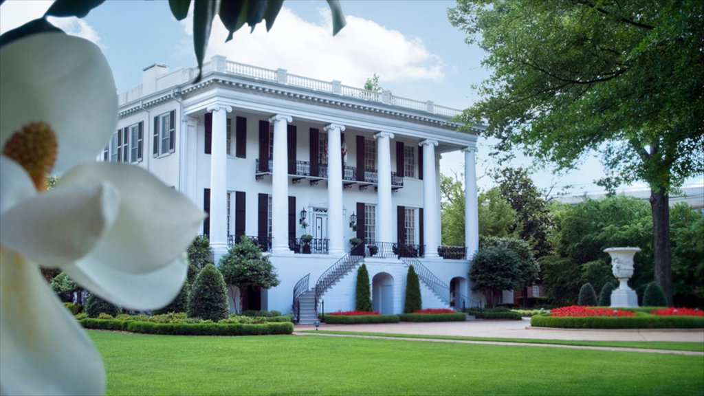 Tuscaloosa showing heritage architecture