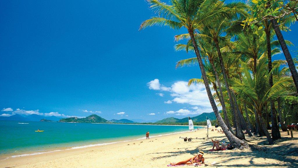 Cairns y Northern Beaches que incluye escenas tropicales, vistas de paisajes y una playa