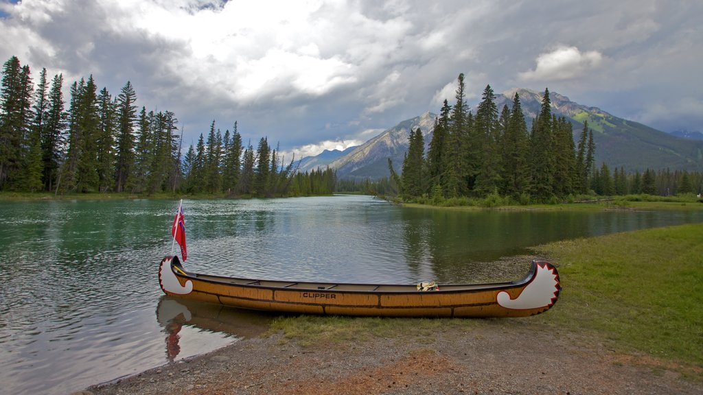 Banff showing a river or creek, kayaking or canoeing and a park