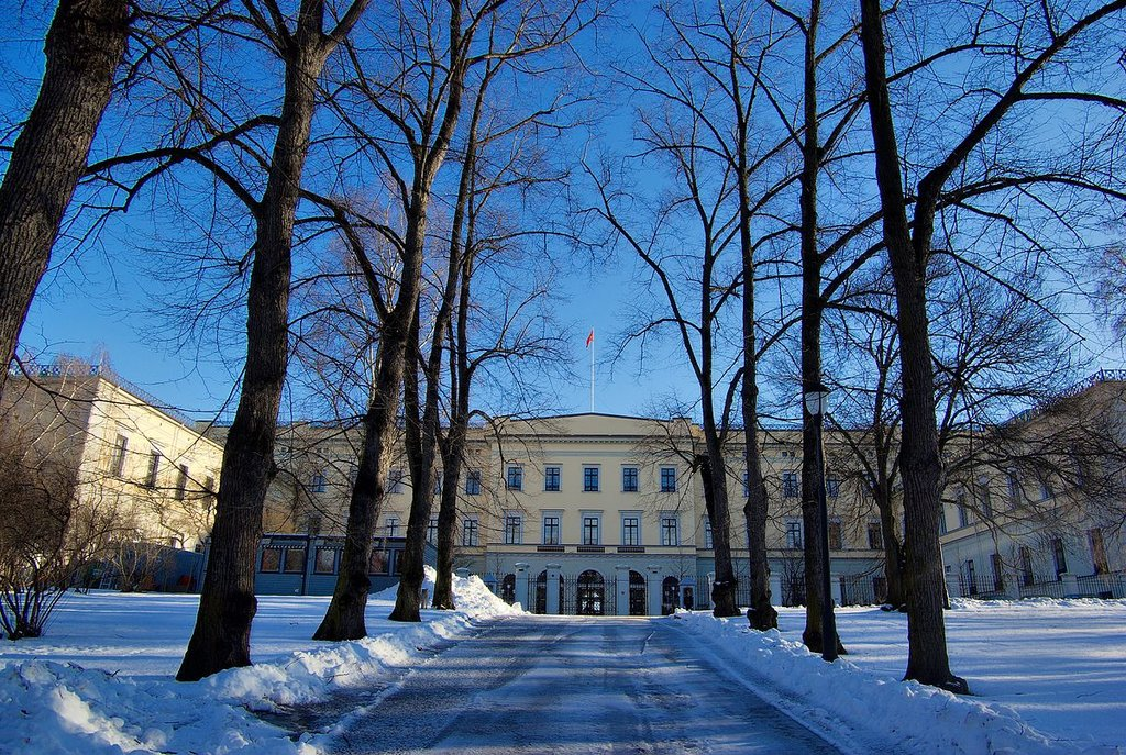 Il palazzo reale visto dal parco - Di Bjørn Erik Pedersen - Opera propria, © 2005, 2006, 2007 by Bjørn Erik Pedersen, CC BY-SA 3.0, https://commons.wikimedia.org/w/index.php?curid=54053