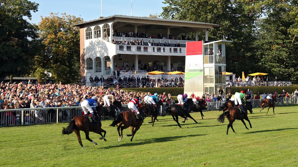 Dahlwitz-Hoppegarten featuring a sporting event and horseriding as well as a large group of people