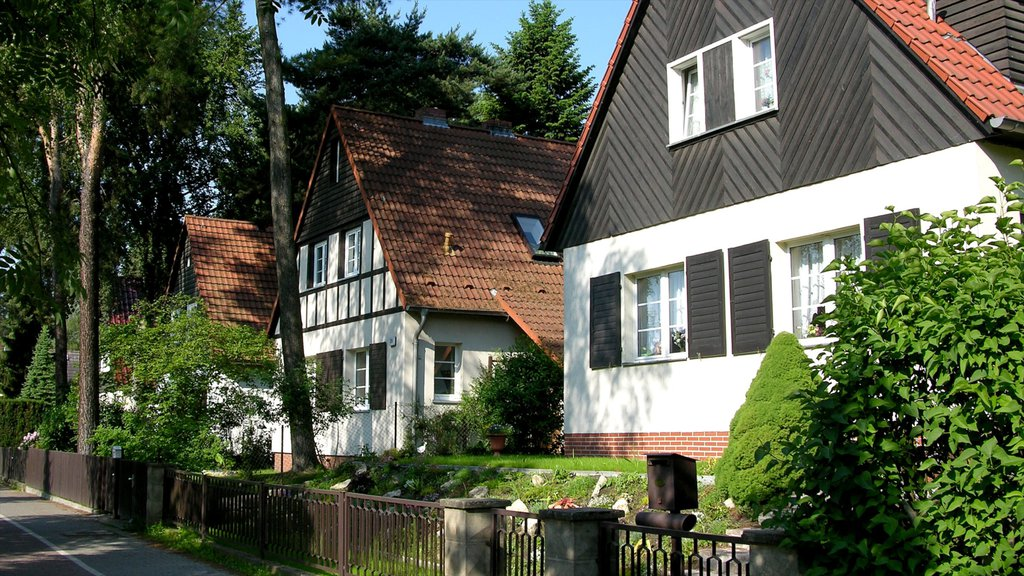 Kleinmachnow showing a house, street scenes and heritage architecture