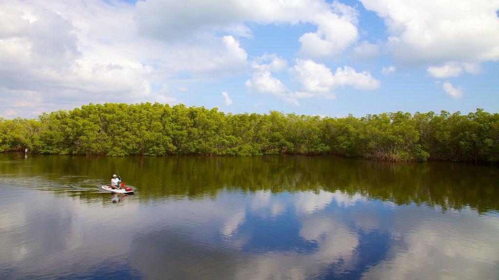 Weedon Island Preserve que incluye imágenes de una isla, un lago o abrevadero y kayak o canoa