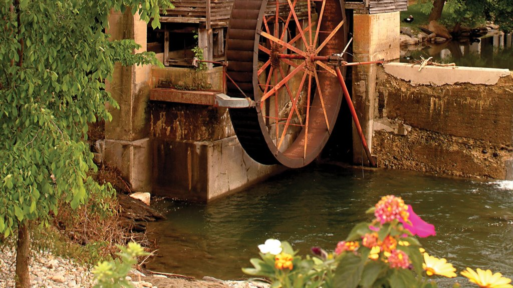 Gatlinburg - Pigeon Forge featuring flowers