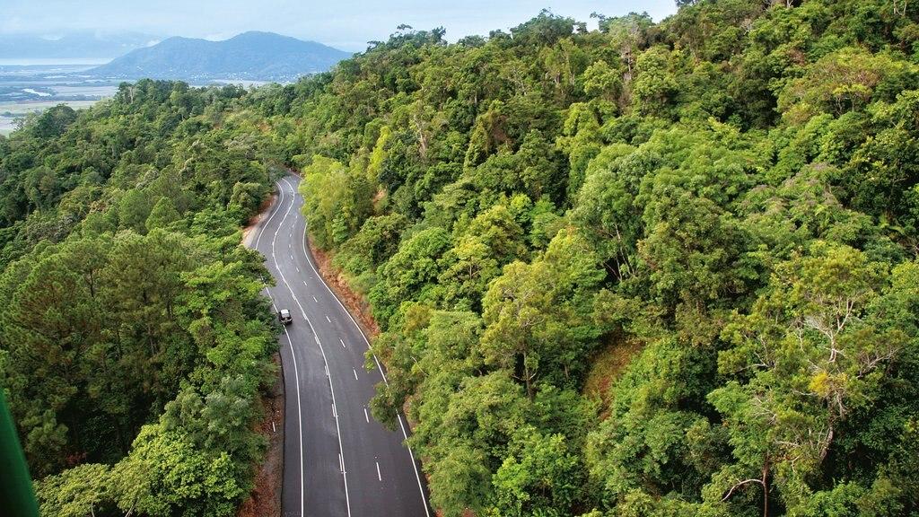 Cairns mostrando escenas forestales y turismo