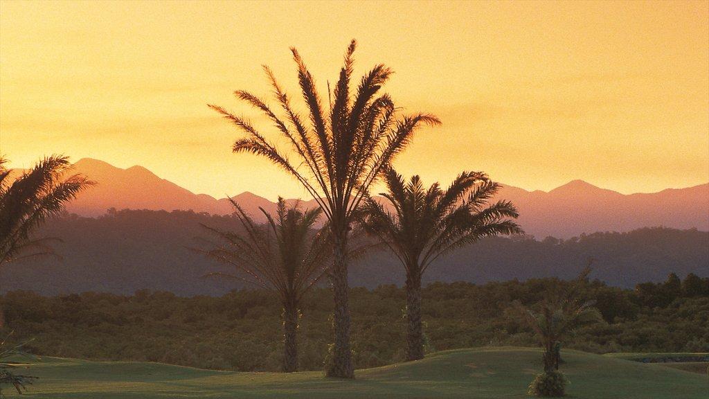 Playa Clifton, Clifton Beach, Queensland, Australia ofreciendo vistas de paisajes, escenas tropicales y una puesta de sol