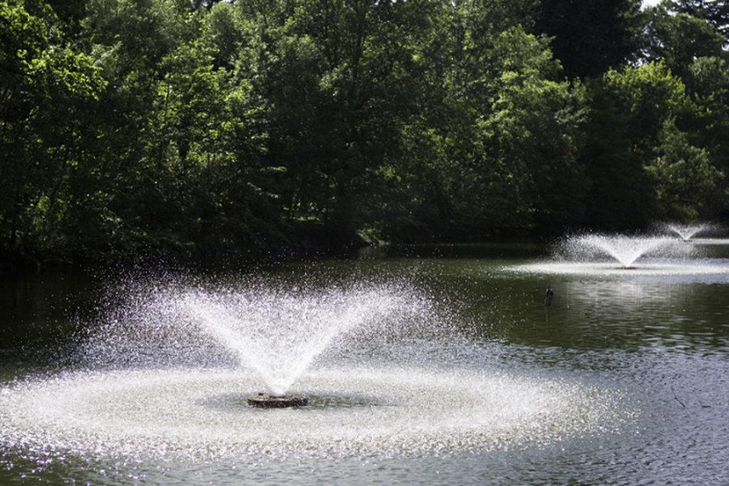 Il piccolo laghetto artificiale dei Giardini Margherita