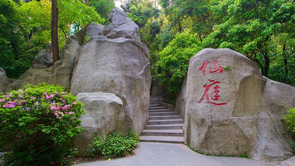 Yuexiu Park showing a park