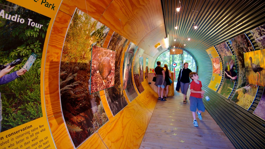 Kiwi and Birdlife Park which includes rides and interior views