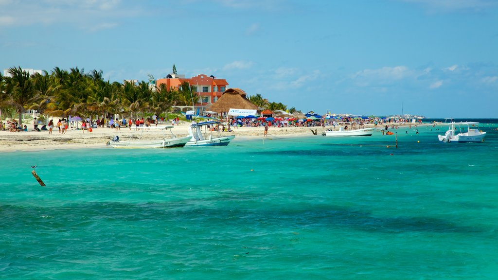 Puerto Morelos which includes a coastal town, tropical scenes and a beach