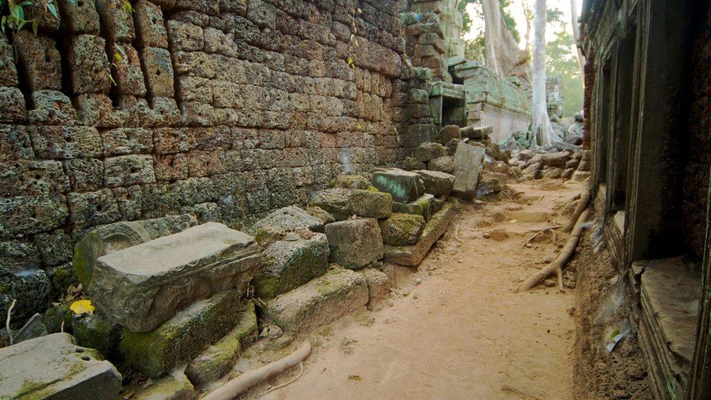 Templo Ta Prohm ofreciendo una ruina