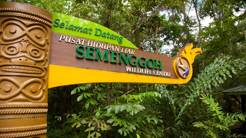 Semenggoh Wildlife Centre which includes signage and zoo animals