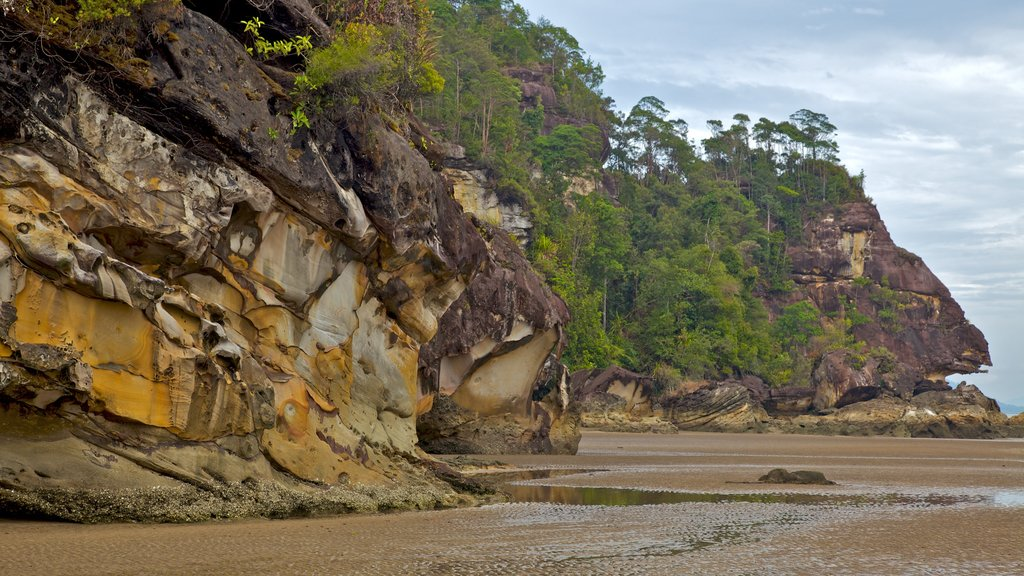 Bako National Park showing mountains and rugged coastline