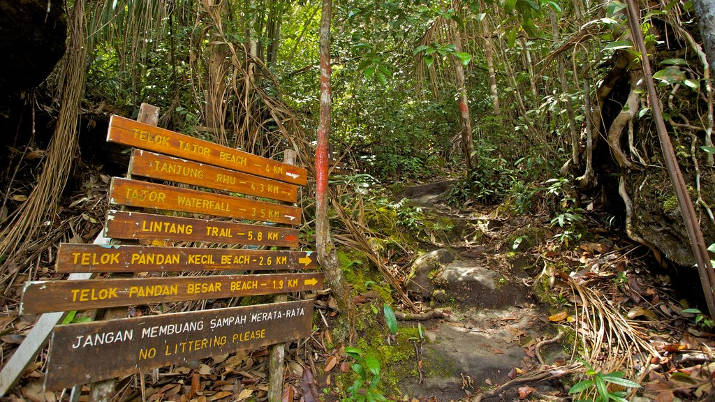 Bako National Park featuring forests, a park and signage