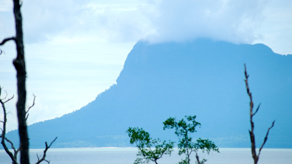 Bako National Park featuring landscape views, mountains and mist or fog