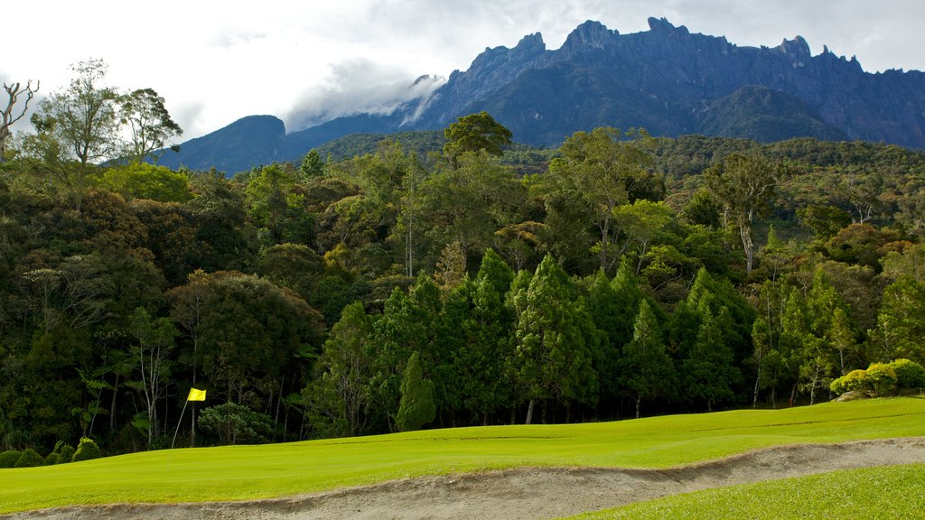 Kinabalu National Park showing tranquil scenes