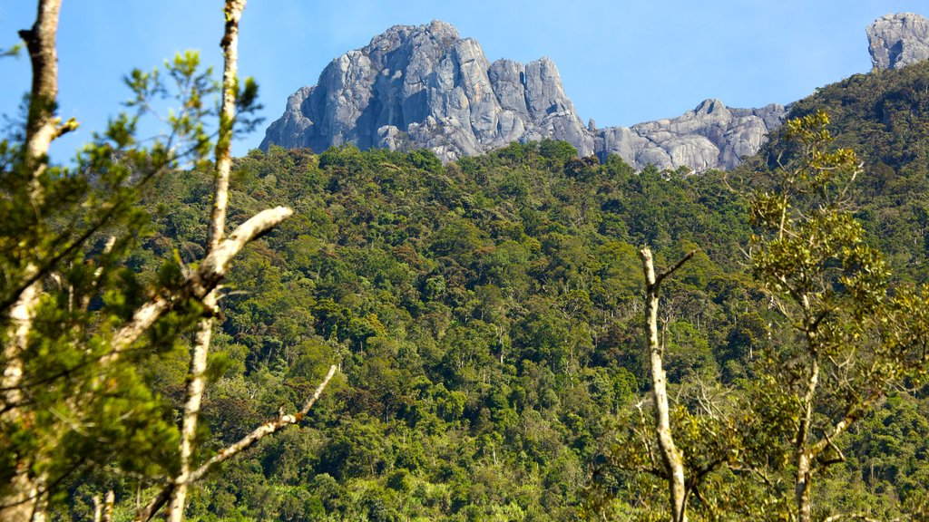Kinabalu National Park showing mountains and tranquil scenes