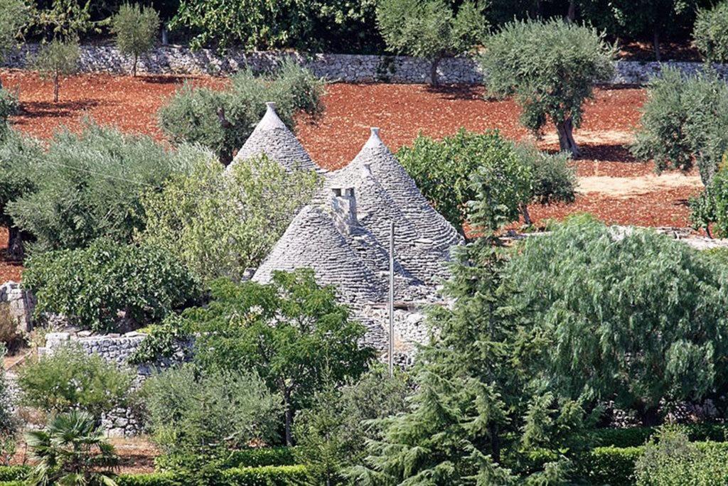 Olivi e Trulli. Carlo Pelagalli  , attraverso Wikimedia Commons
