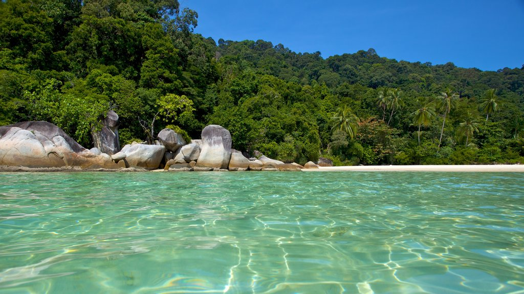 Pulau Perhentian Besar which includes landscape views and a beach