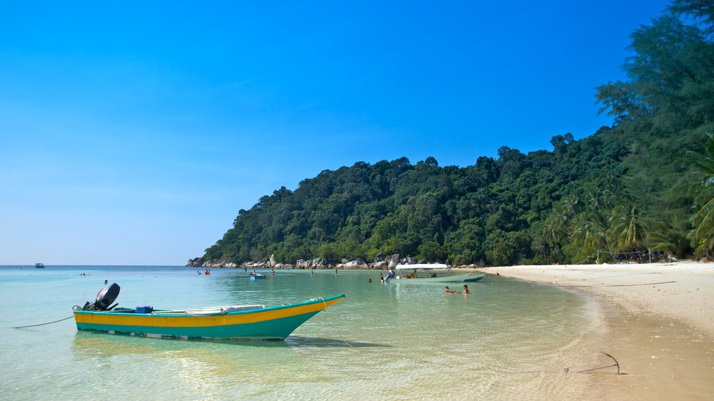 Pulau Perhentian Besar showing landscape views, tropical scenes and swimming
